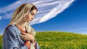 Mẹ truyền tin (Cao Thăng - Mai Thiên Vân)