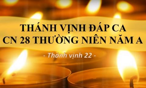 Thánh vịnh Đáp ca Chúa nhật 28 Thường niên A (Lm. Thái Nguyên - Mạnh Khôi)