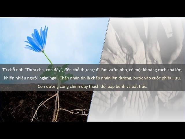 Tình yêu trong hành động (Lm. Thái Nguyên - Kim Ngân)