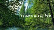 Album Trầm ca tin yêu (Văn Chi)